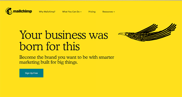 An Example of Mailchimp's New Branding